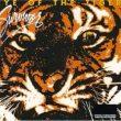 Survivor | Eye Of The Tiger (multitrack)